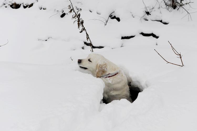"""Snøen skjuler farlige """"feller"""". Thea datt ned i dette røret, og kom ikke opp."""