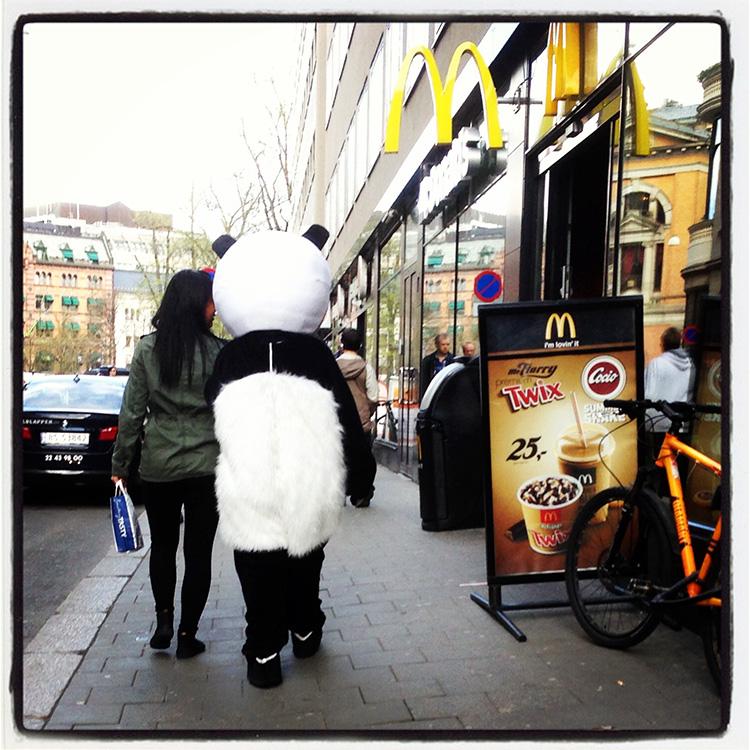 Panda_oslo140513