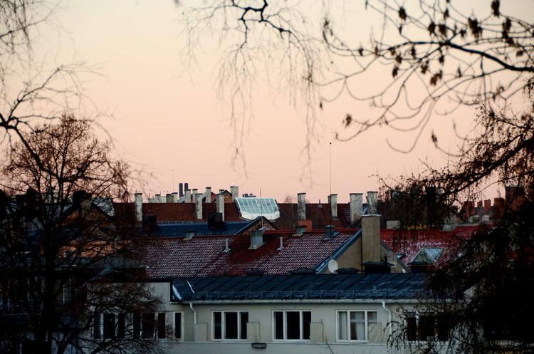 Oslo 12.01.2013. Hustak, St. Hanshaugen. FOTO: JOAKIM S. ENGER