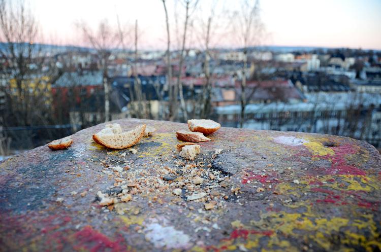 Oslo 12.01.2013. Br¿d pŒ stein ved Stensparken. FOTO: JOAKIM S. ENGER