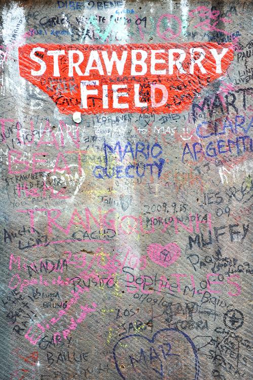 strawberryfields_web